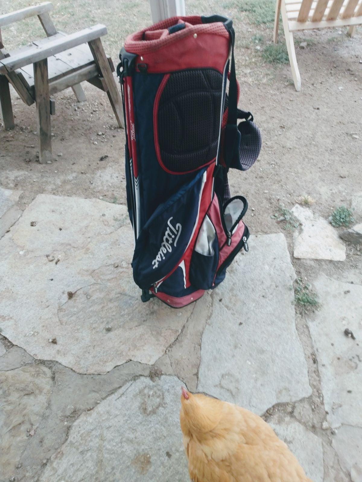 Titleist Hybrid 14 golf stand bag