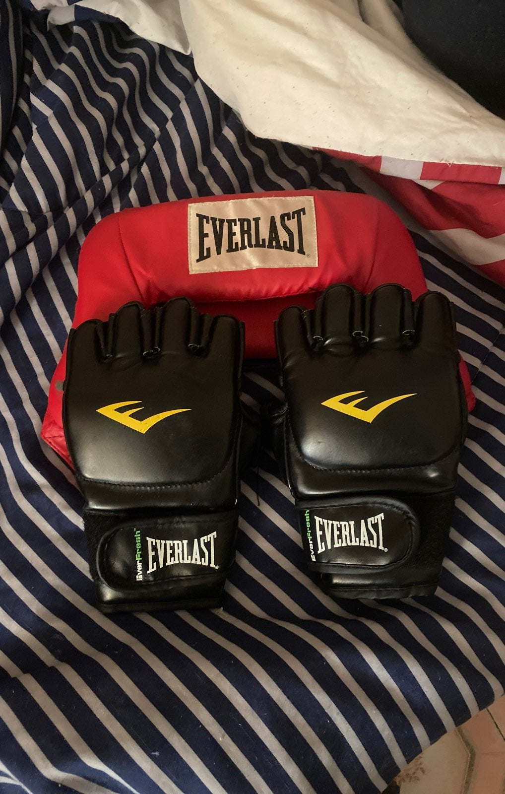 Everlast Boxing Gloves and headgear