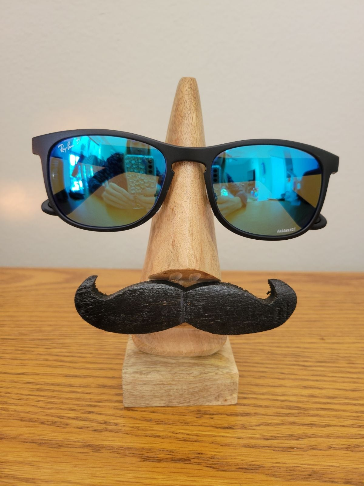 Ray-Ban Sunglasses RB4263