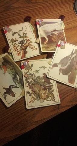 Ephemera Journal Bird Cards