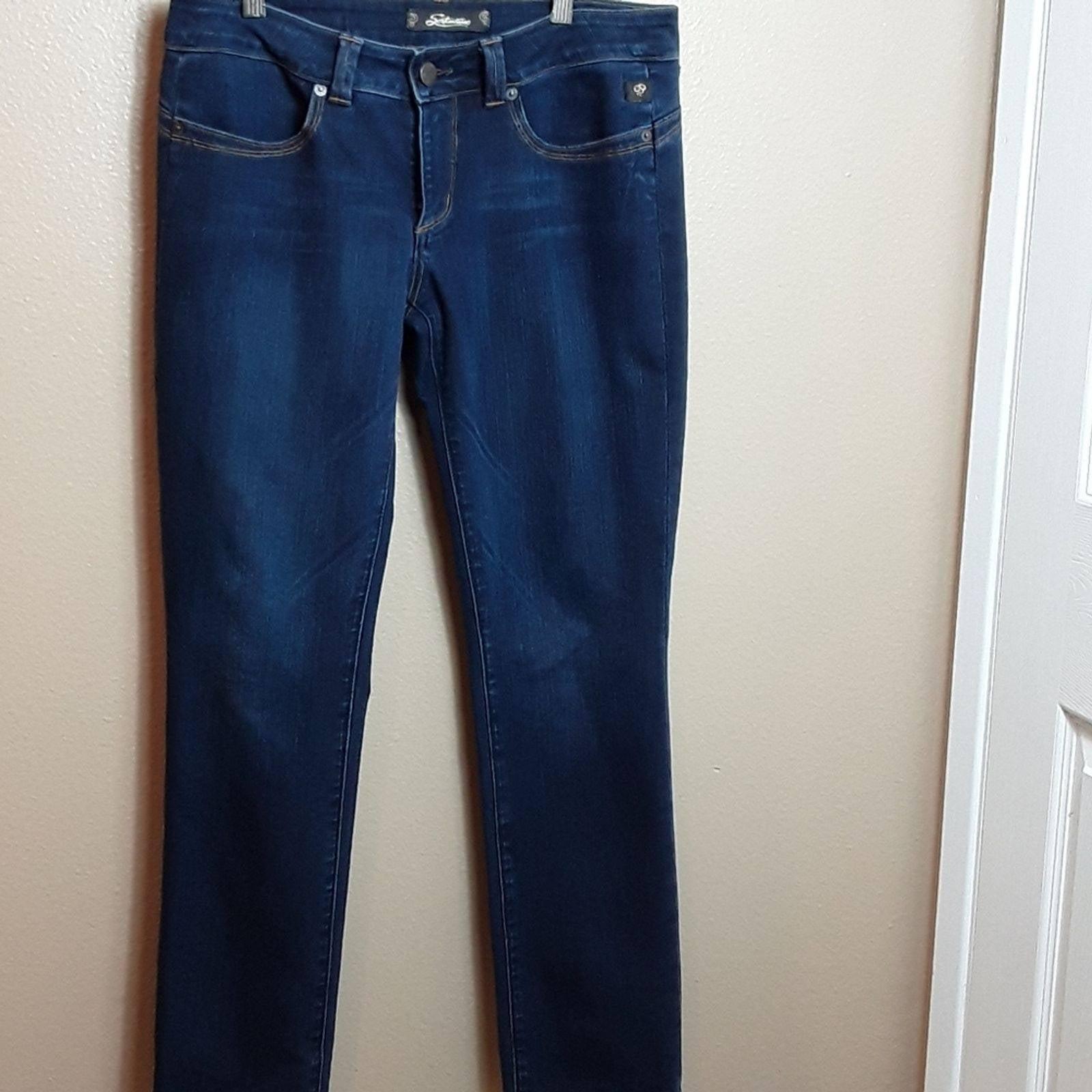 Serfontaine Darkwash Denim Jean size 29