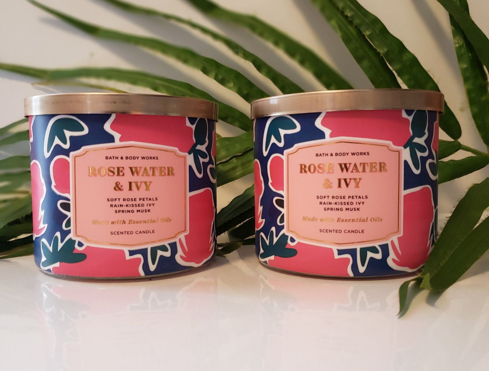Bath & Body Works Home Rose Water & Ivy
