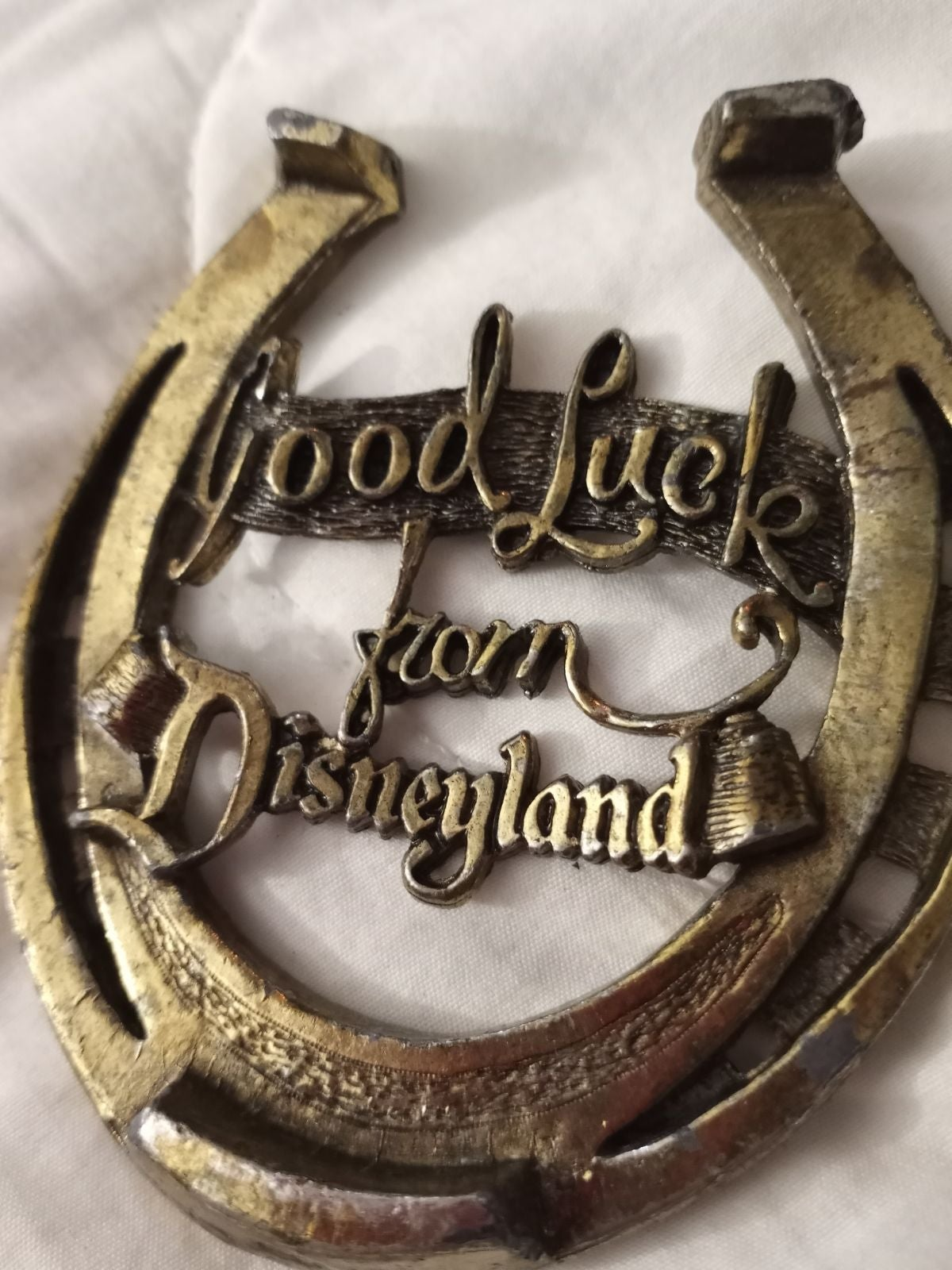 Lucky Disneyland Horseshoe