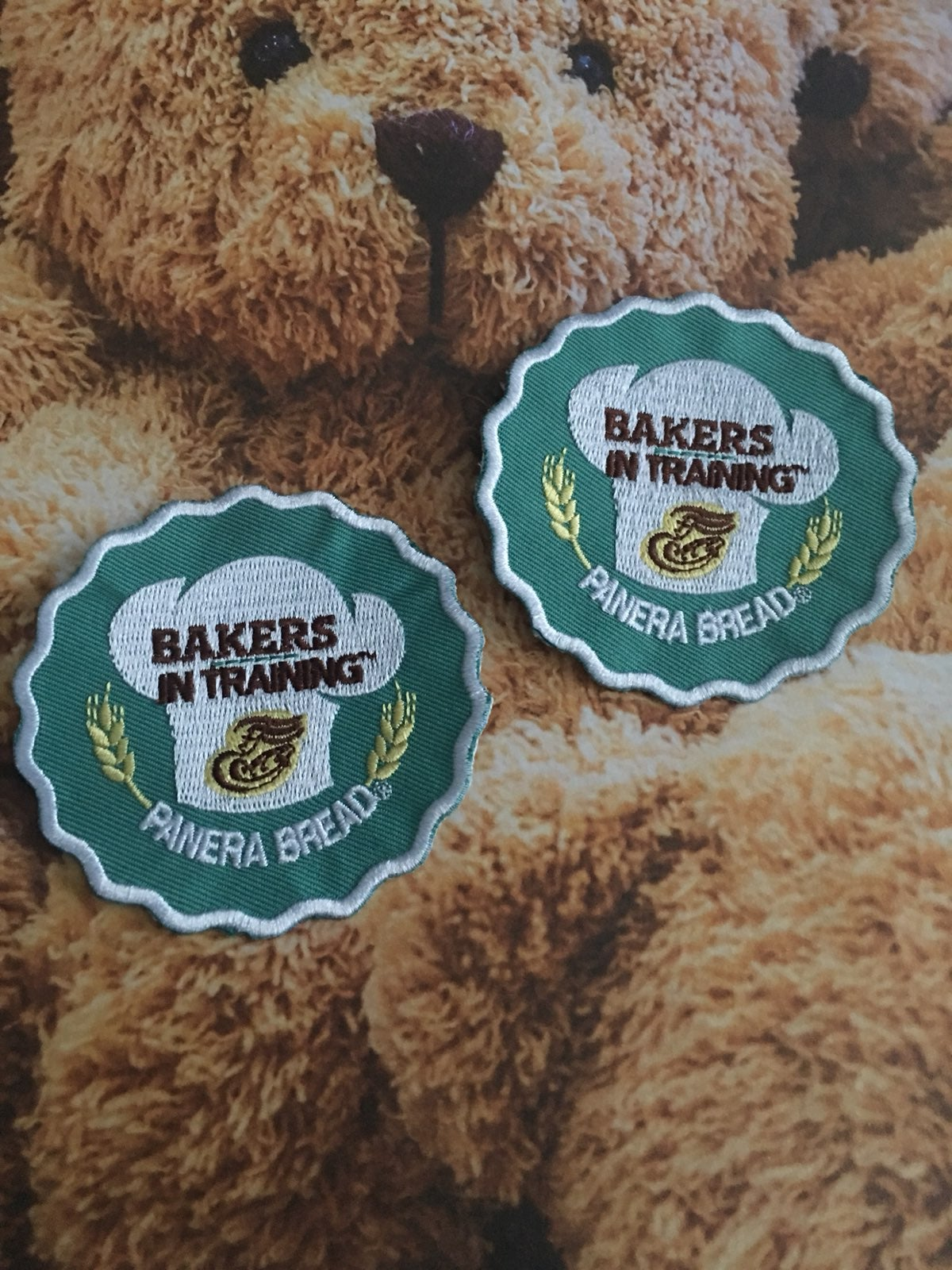 Panera Bread Girl Scout Patches