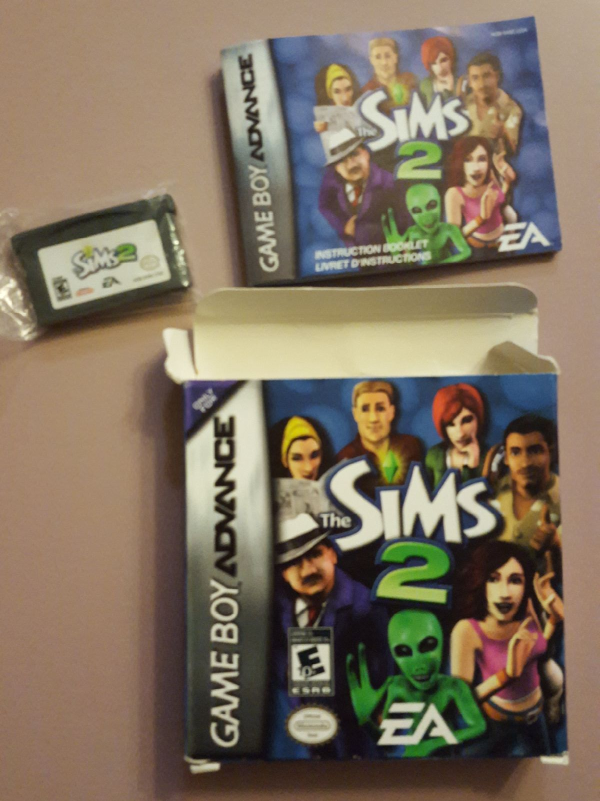 The Sims 2 Gameboy Advance