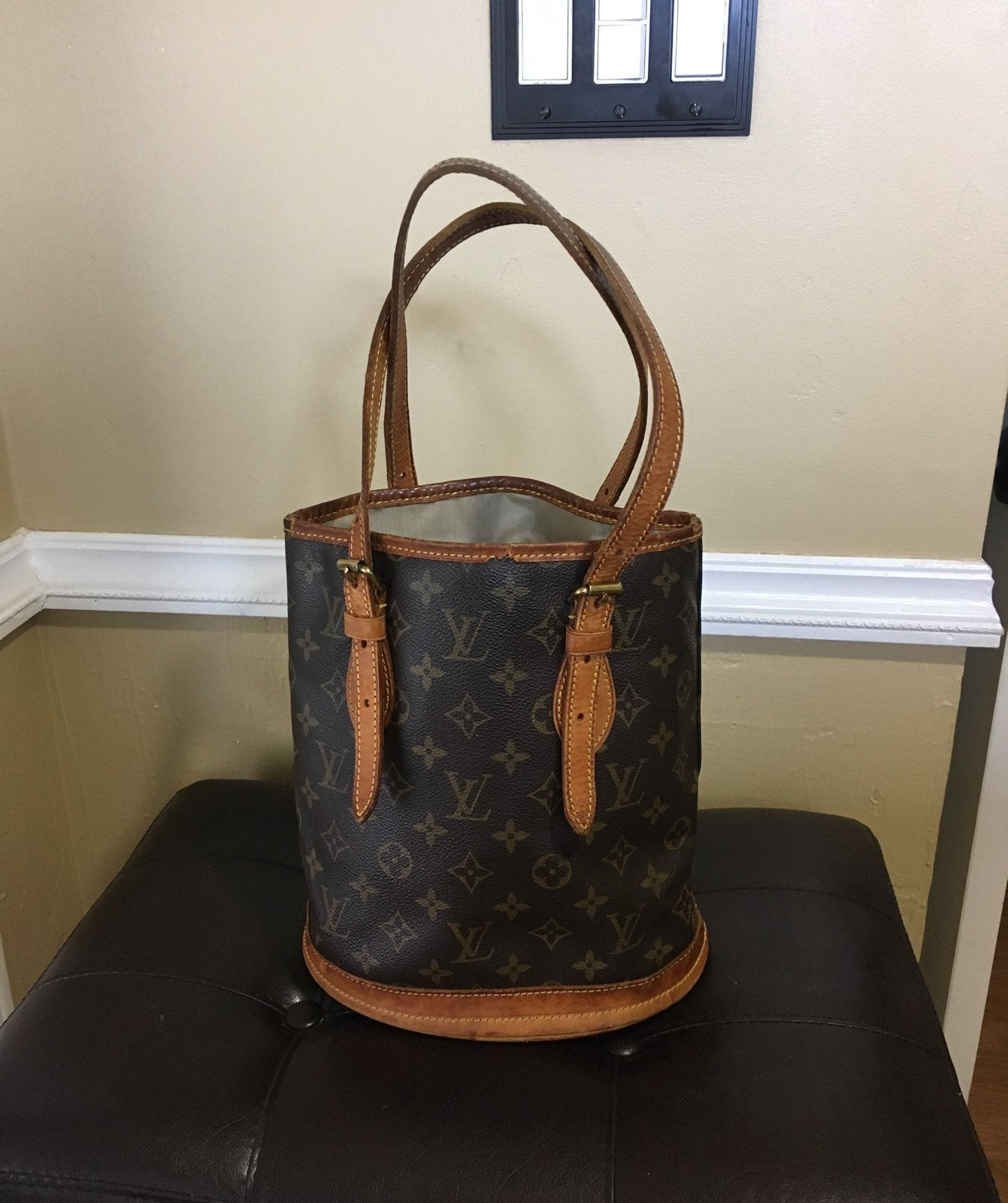 Authentic Louis Vuitton PM Bucket Handba