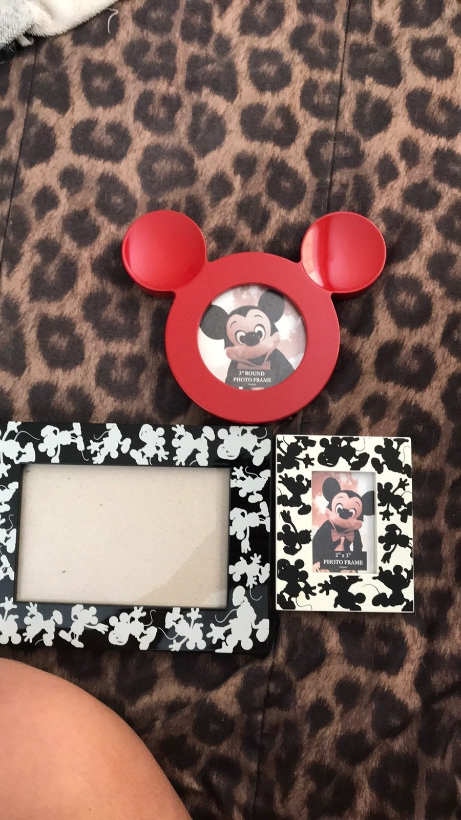 Mickey Mouse Picture Frames