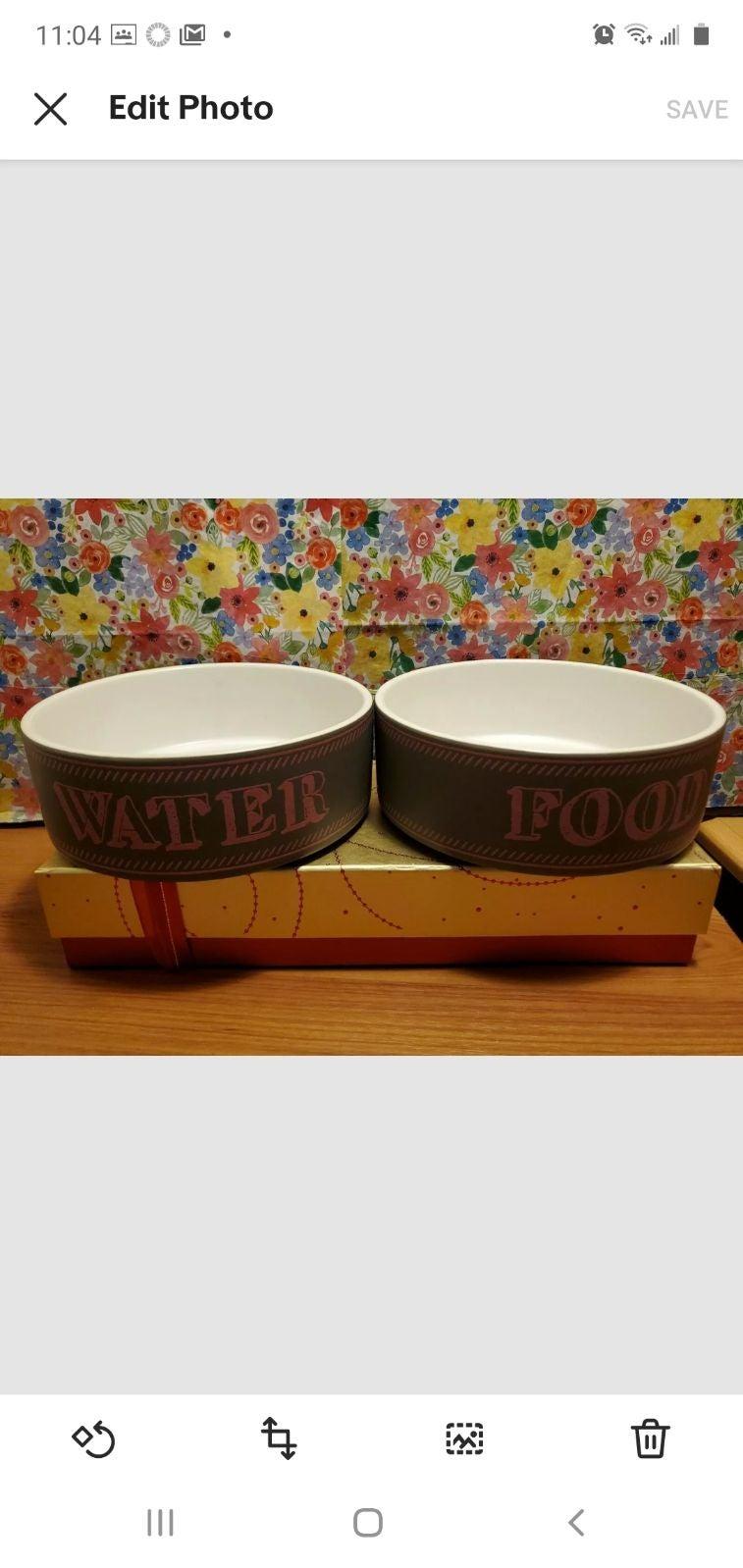 Pet Rageous Designs 2 Bowl(food & water)