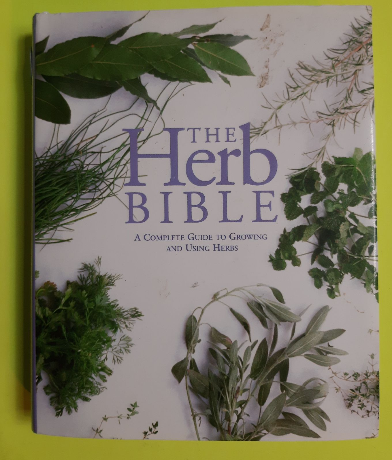 The Herb Bible by Jennie Harding  FIRST