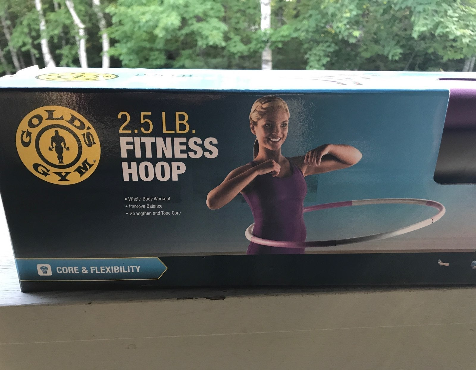 Gold's Gym Fitness Hoop