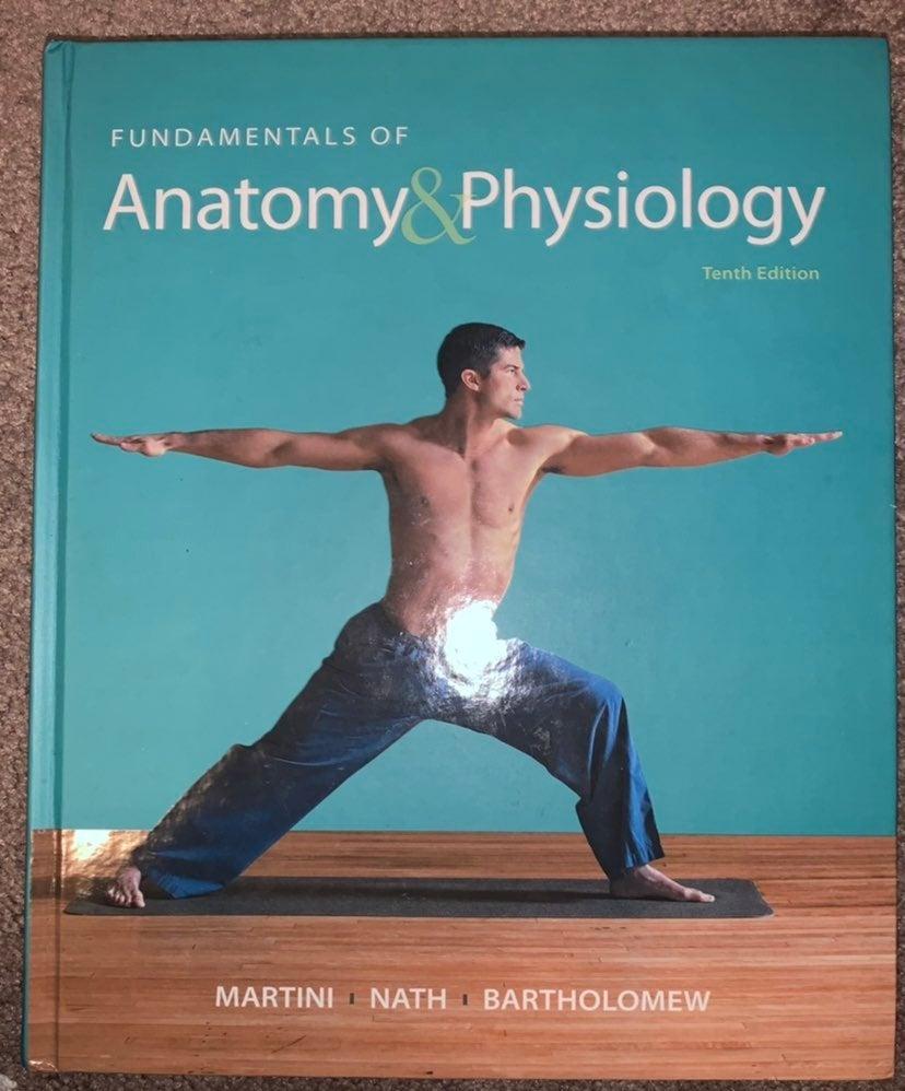 Human Anatomy Physiology Textbook
