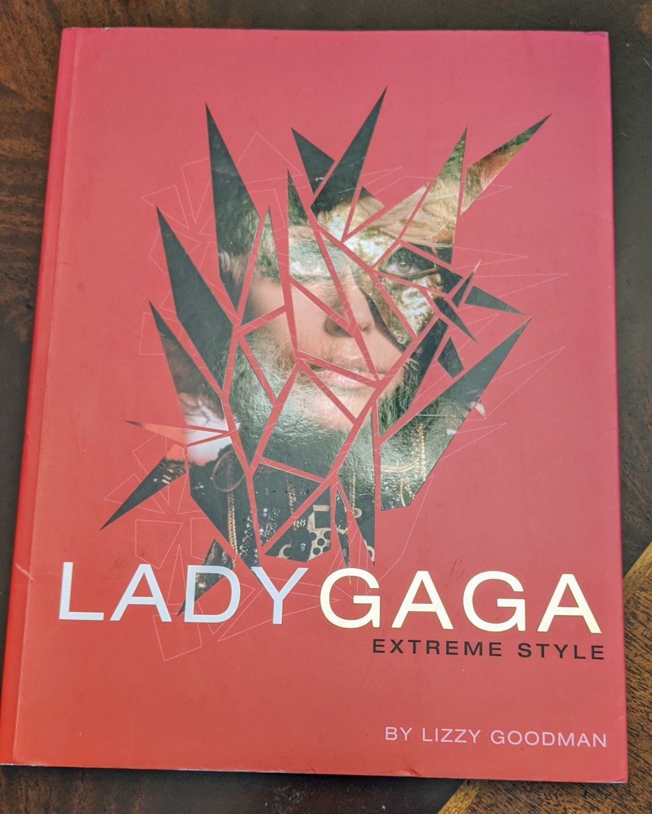 Lady Gaga Extreme Style book by Lizzy Go