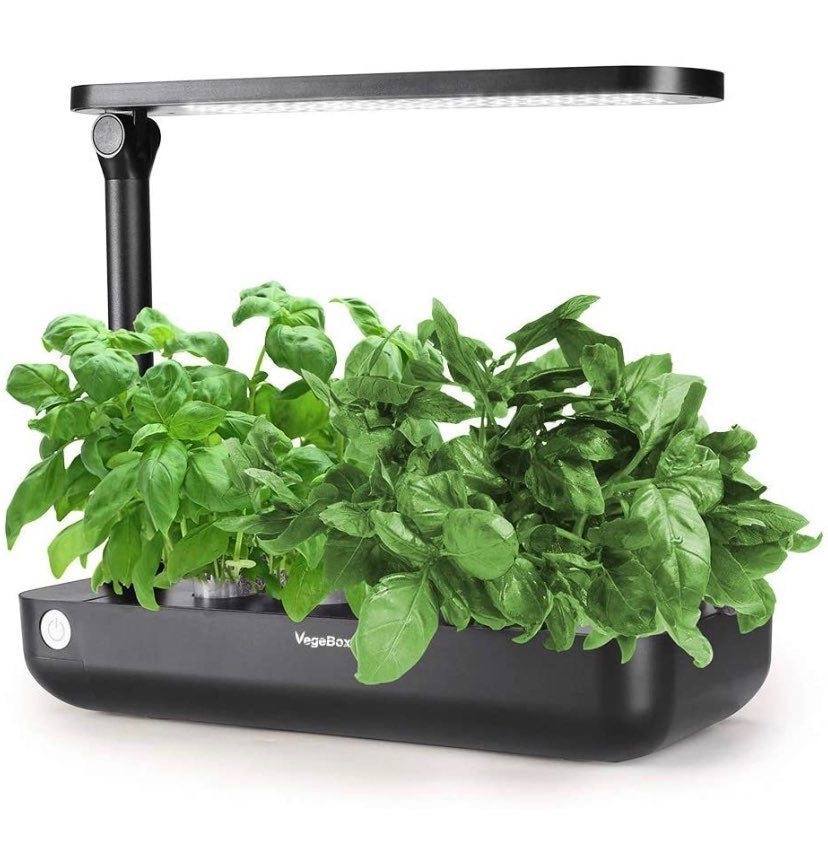Hydroponic Indoor Growing System