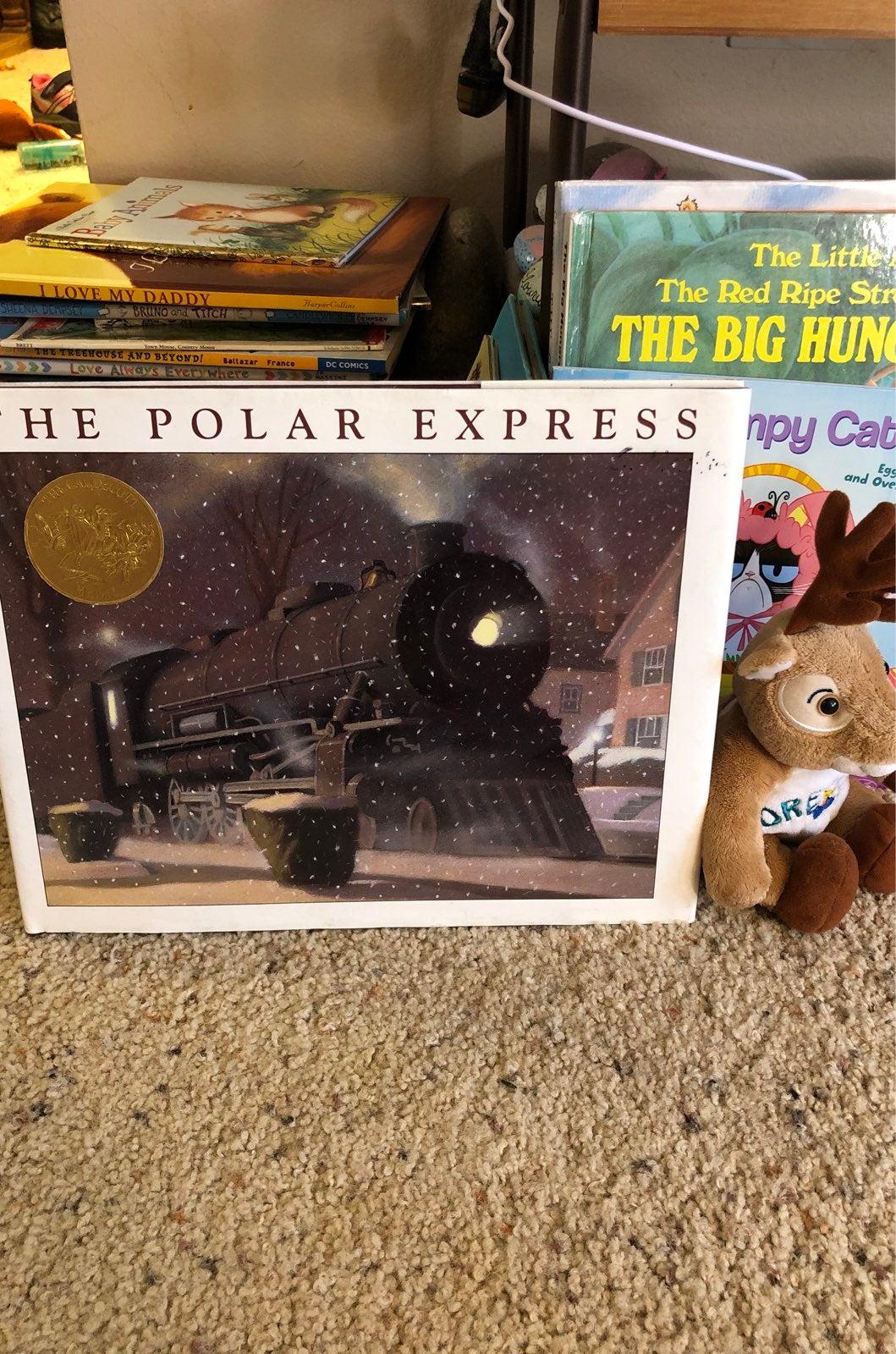 Polar bear express book hardcover