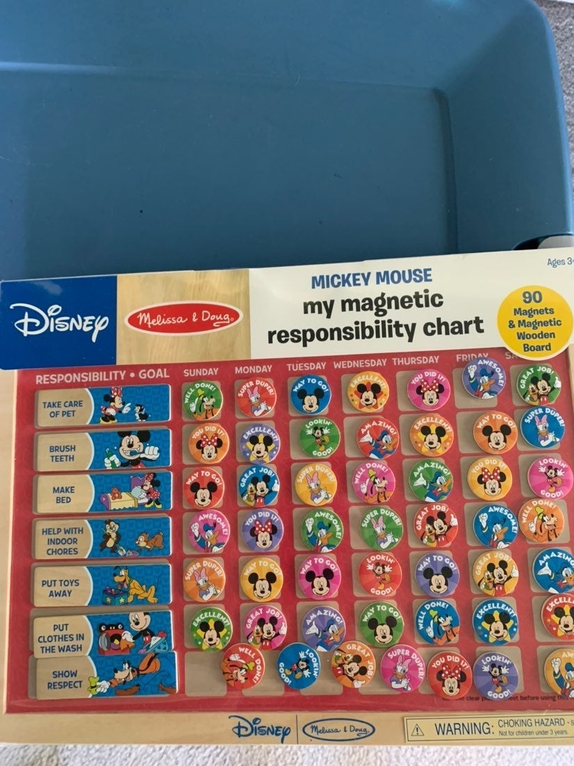 Mickey Mouse Magnetic Responsibility cha