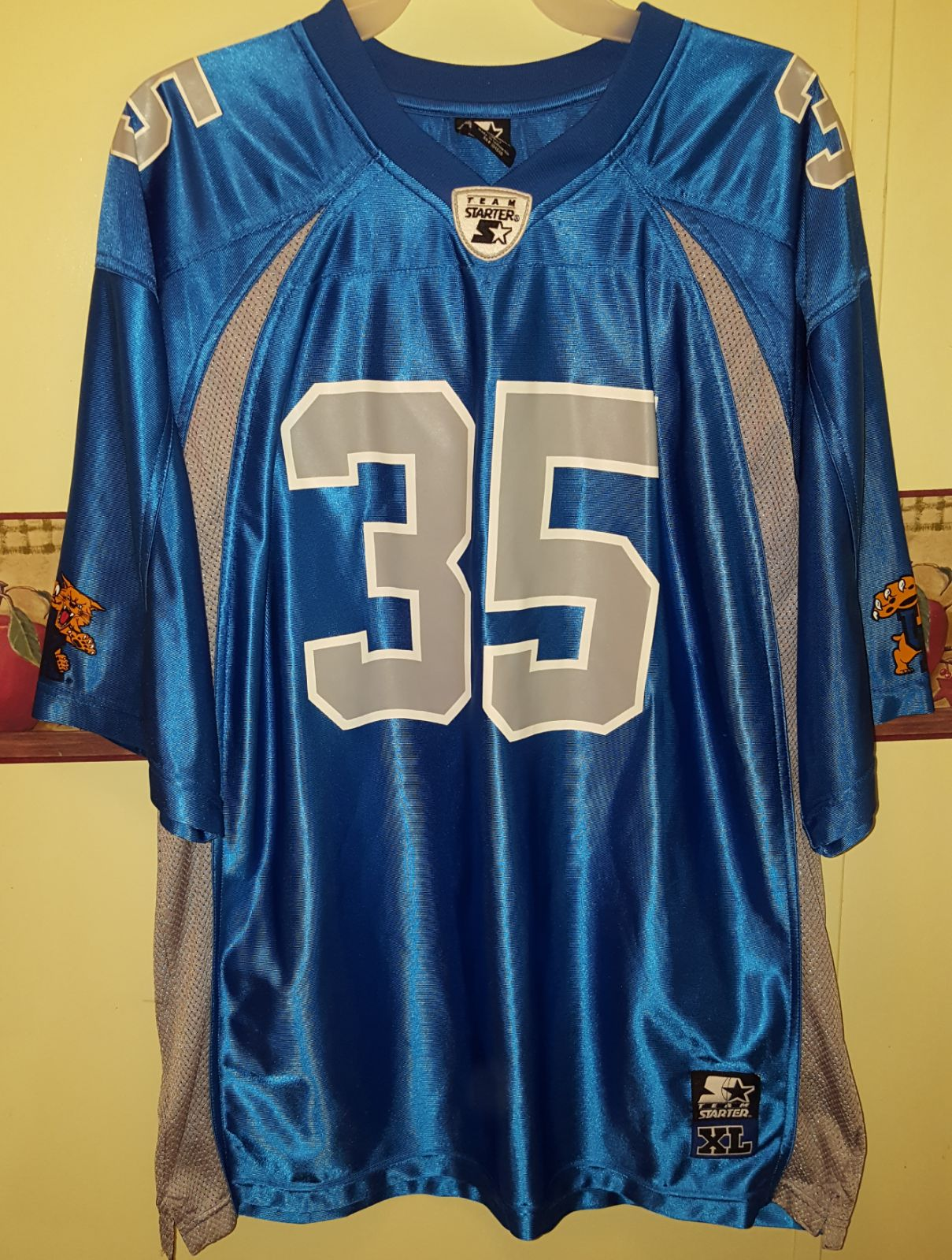 Kentucky Wildcats Starter Jersey #35