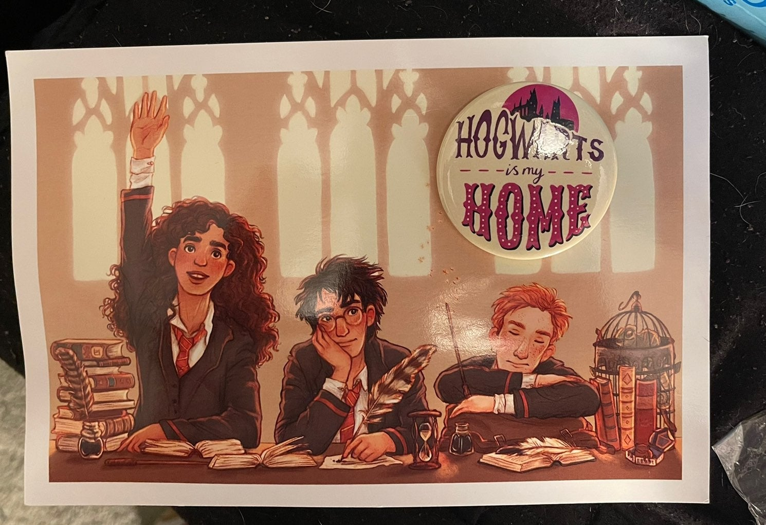 Harry Potter Owlcrate print and botton