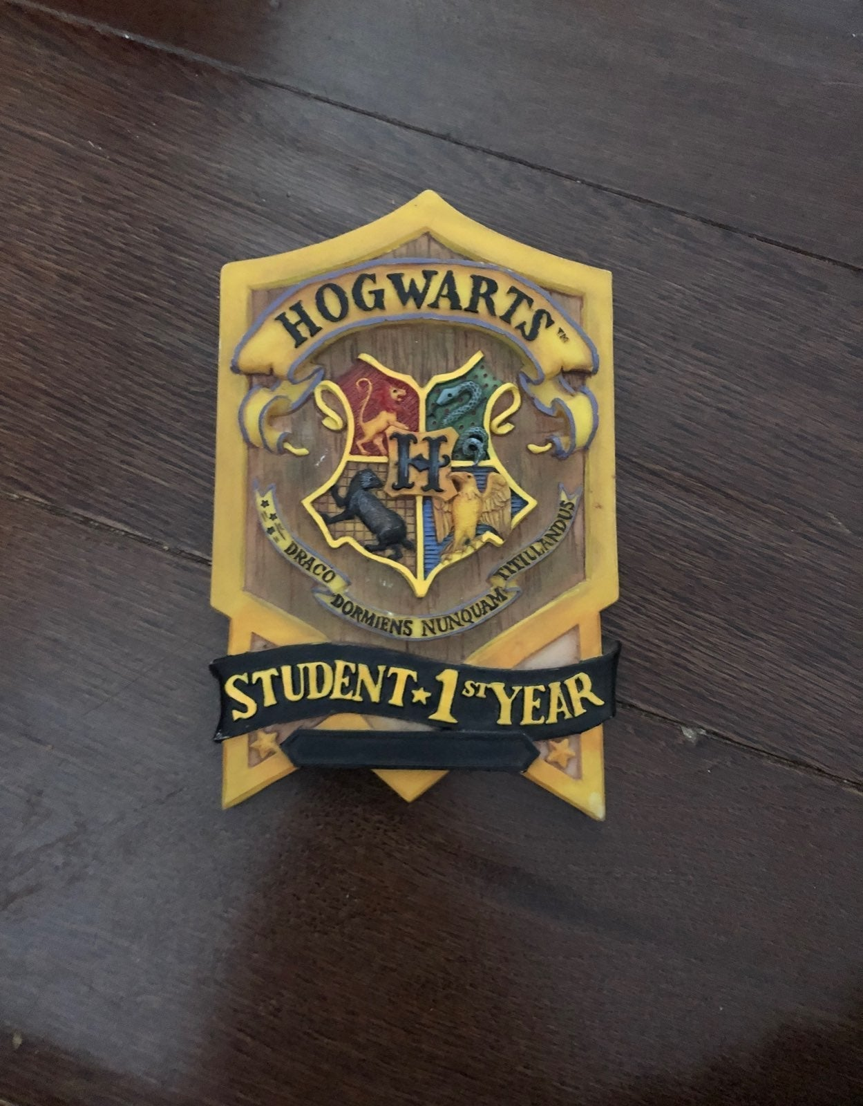 Harry potter Hogwarts First Year Plaque