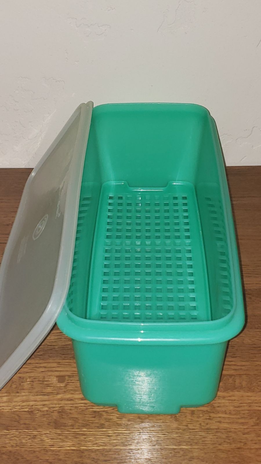 Vintage Tupperware Celery/Salad Keeper
