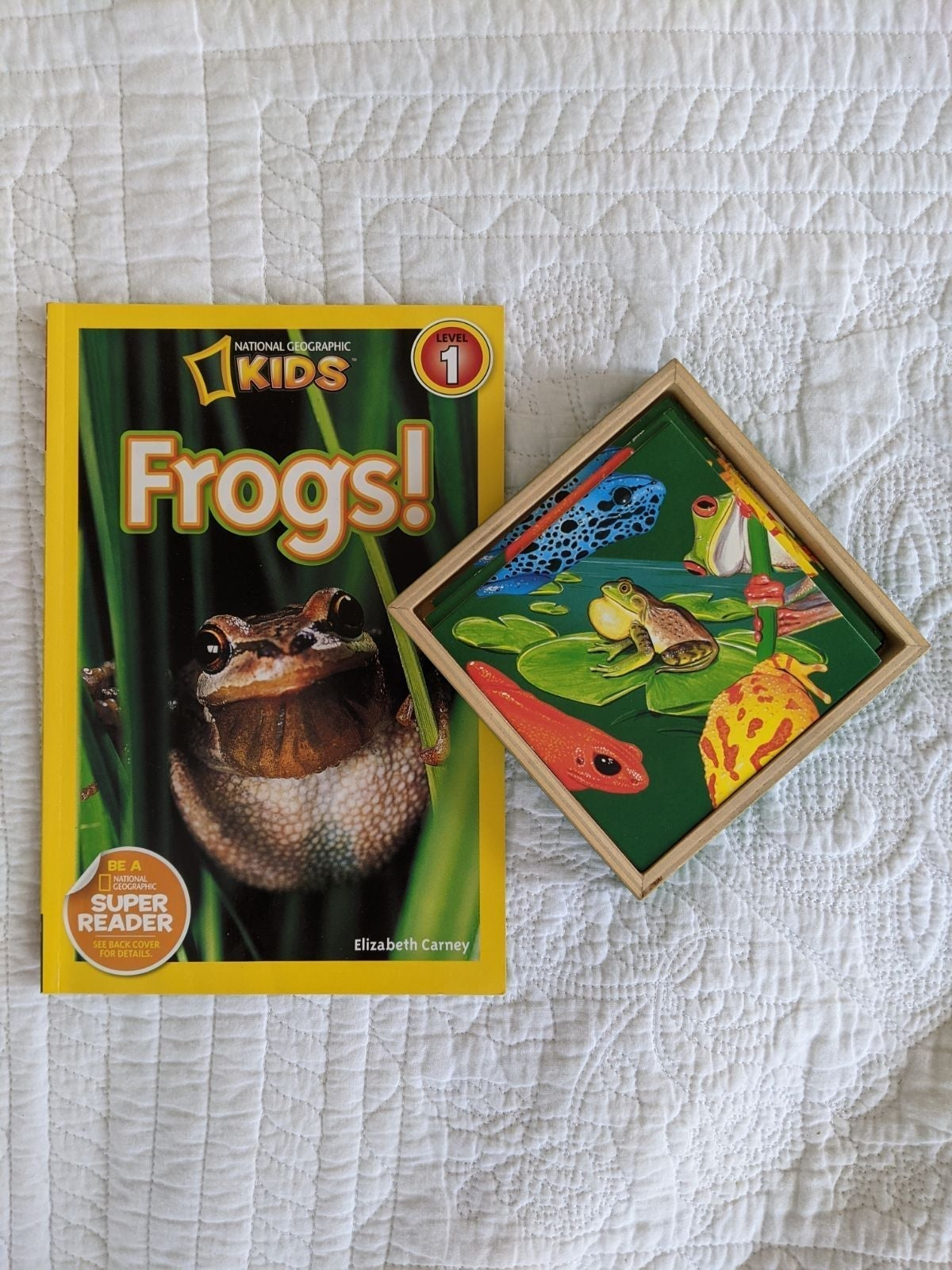 Frogs! Educational Bundle