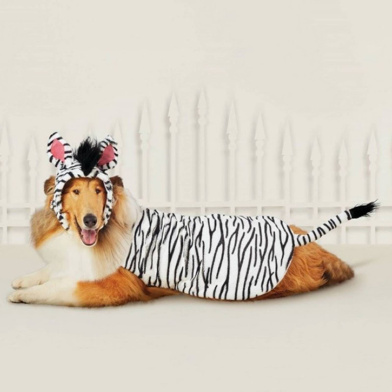 NWT Zebra costume for cats and dogs xs