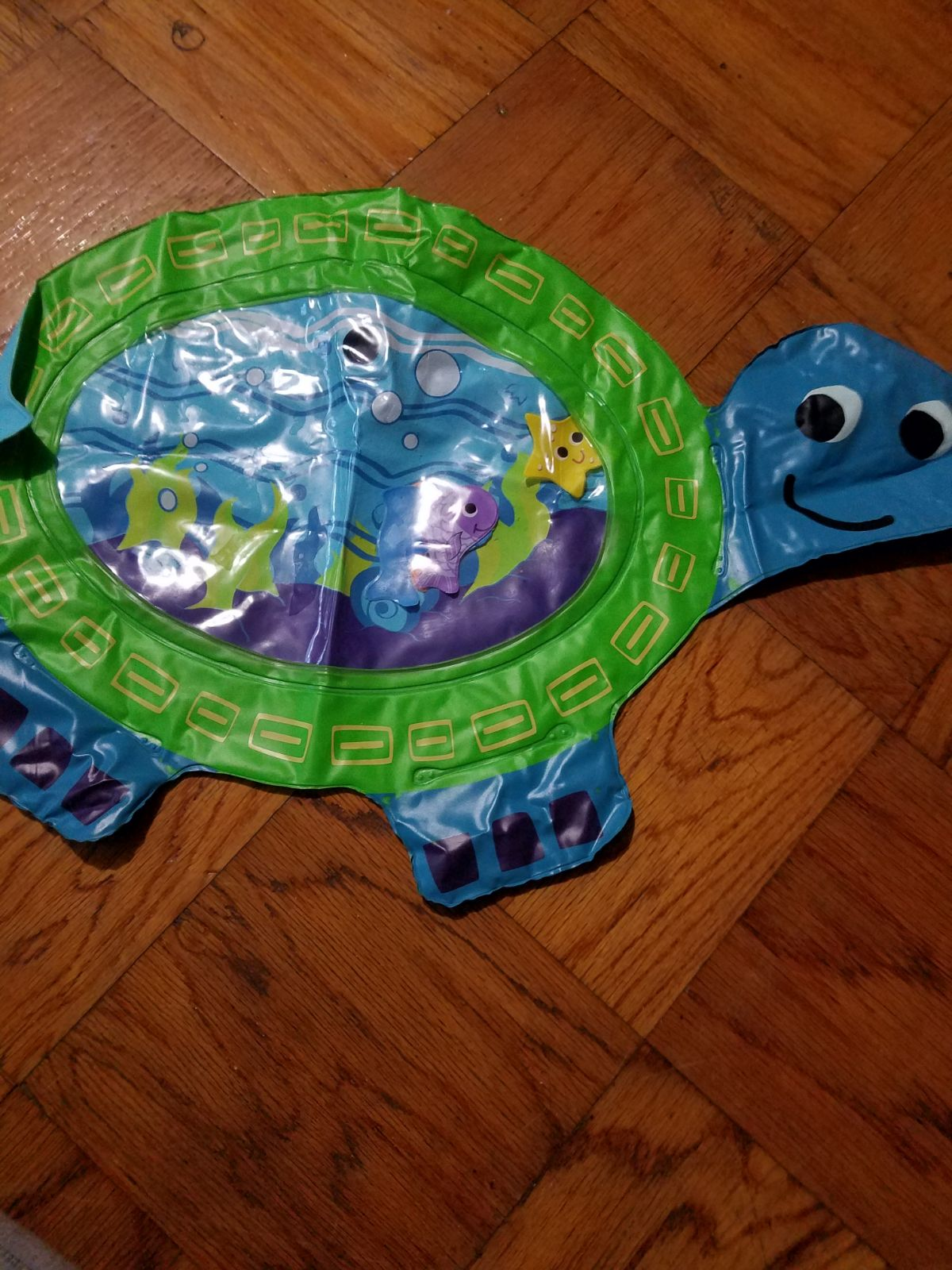 Limited Edition Turtle Water Play Mat