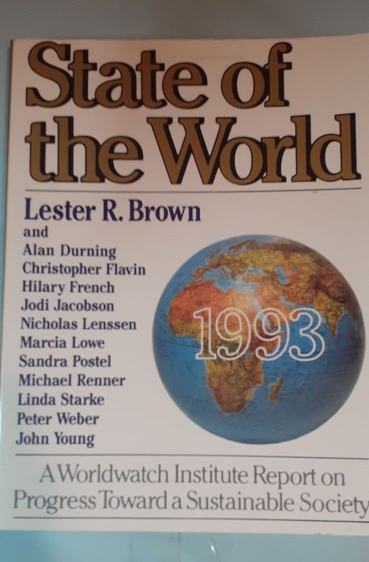 State of the world 1993 book
