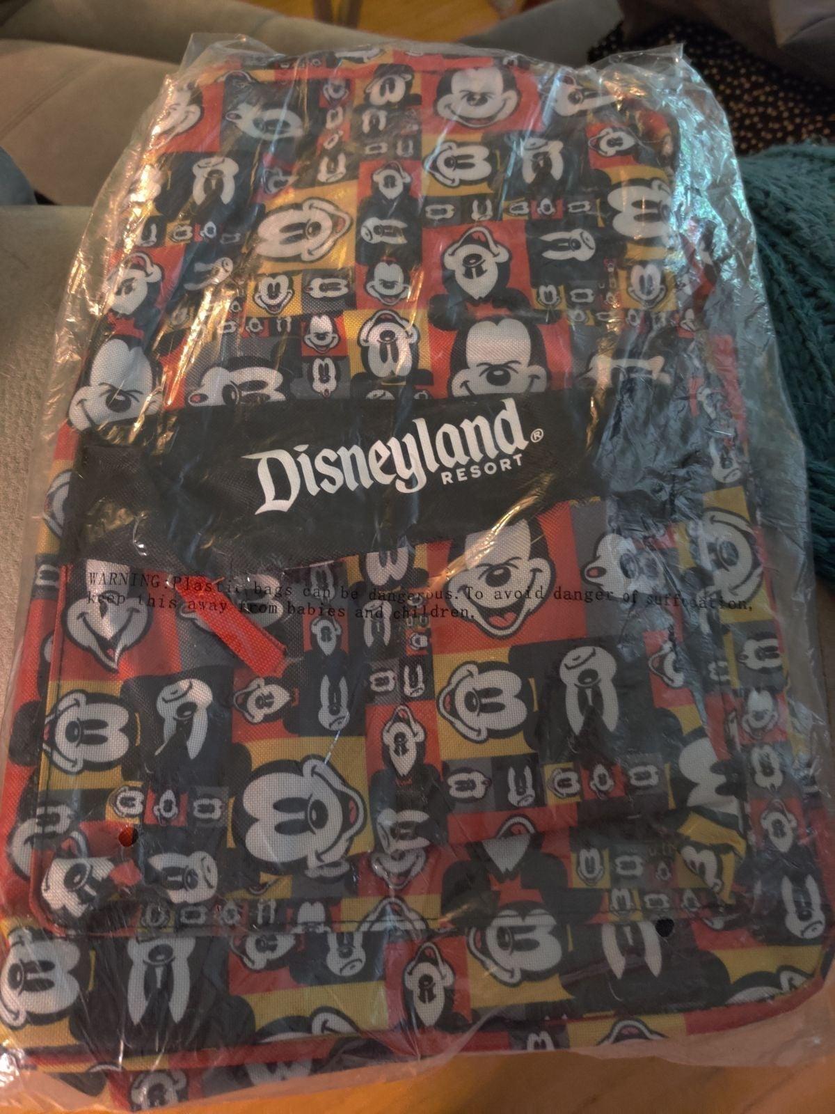 Disneyland Medium size Backpack