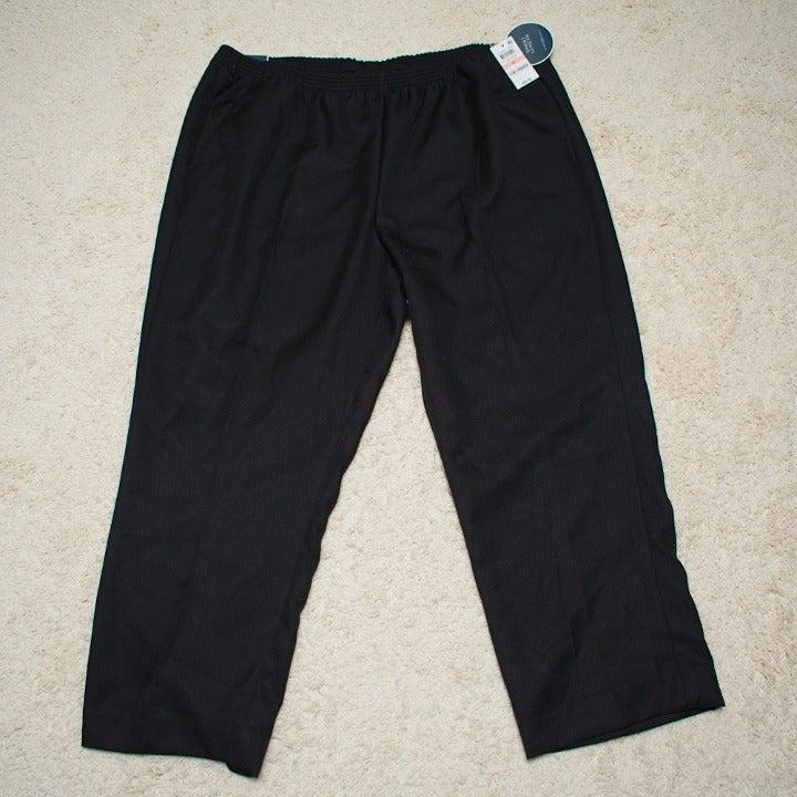 Karen Scott Black Plus Pants 2X