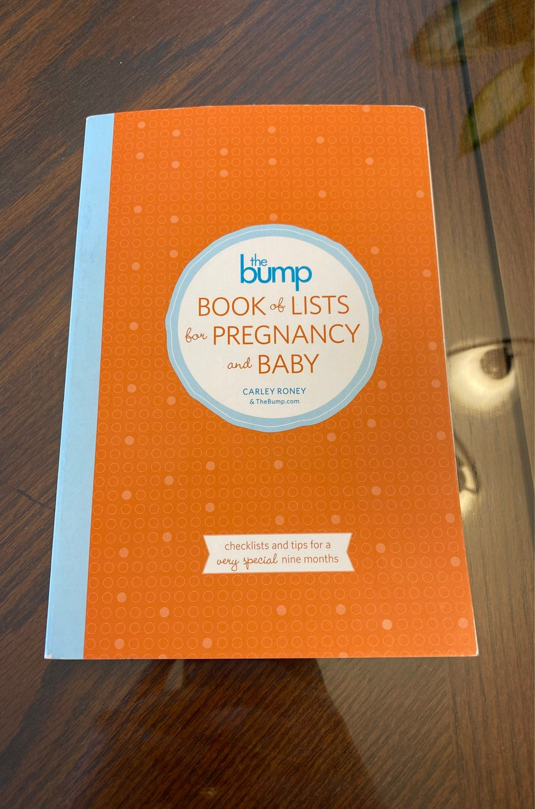 The Bump Book of Lists for Pregnancy