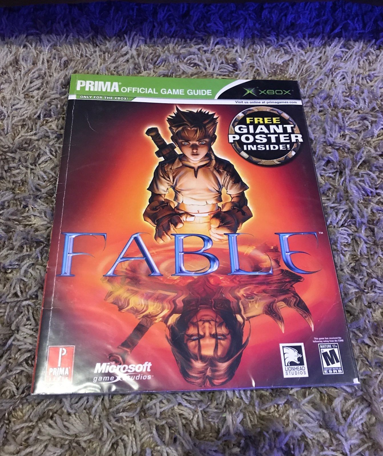 Fable (2004) on Xbox Guide