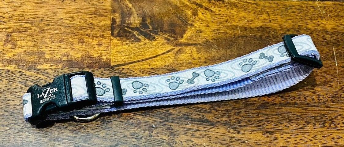 Lazer Brite Reflective Pet Collar