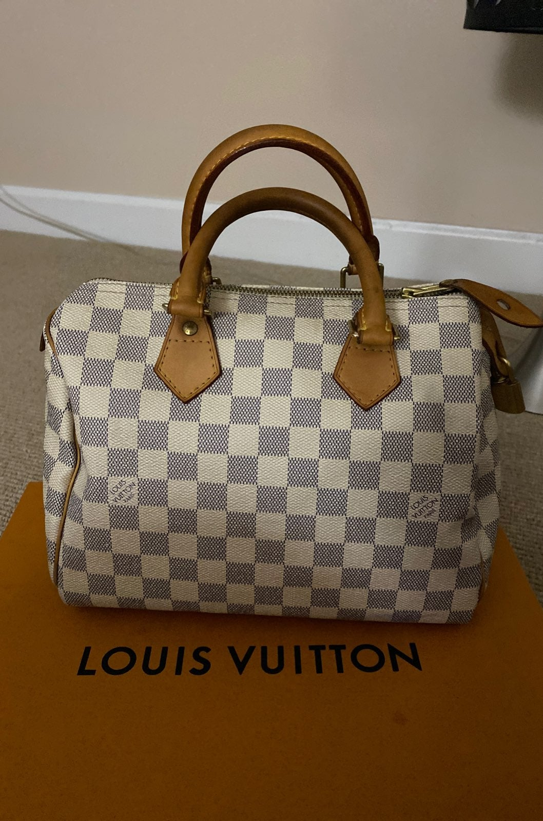 Louis Vuitton Speedy Azur  30 updates