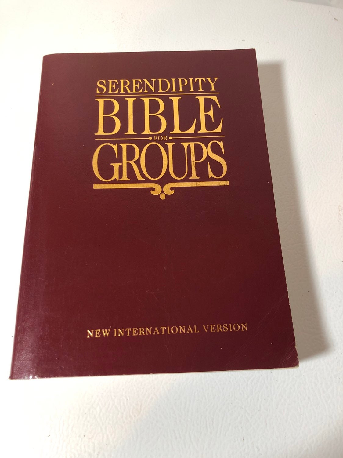 Serendipity Bible for Groups NIV