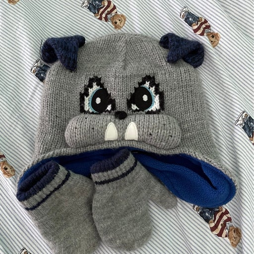 Toddler Boy hat and mittens