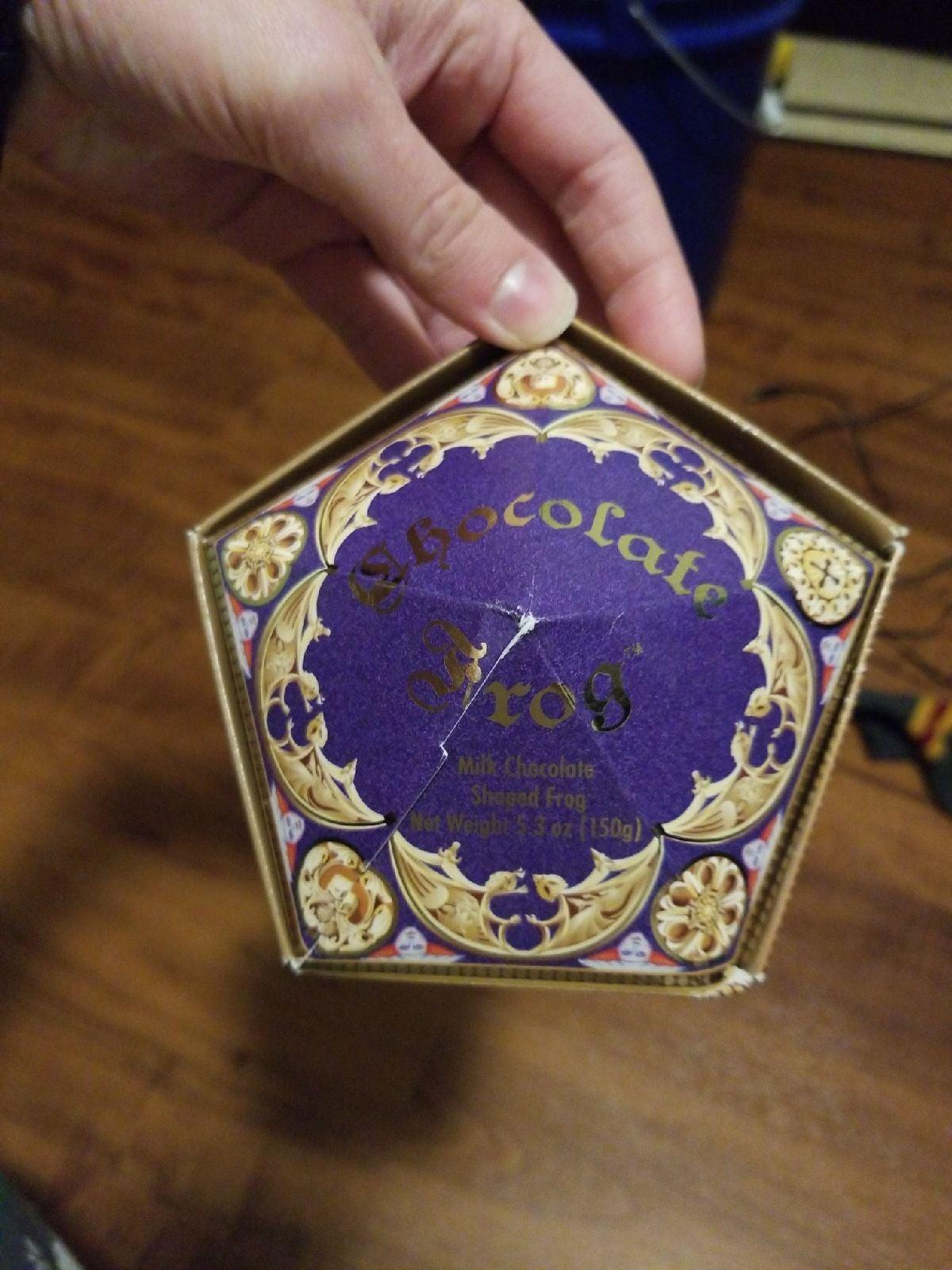 Harry Potter Chocolate Frog Godric Gryff
