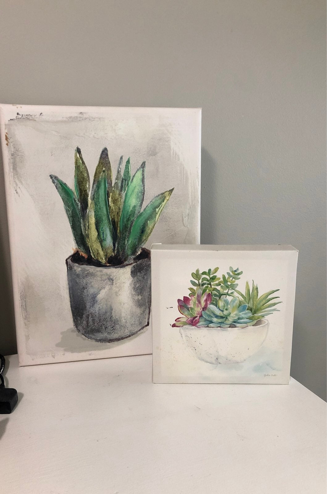 canvas wall art - plants