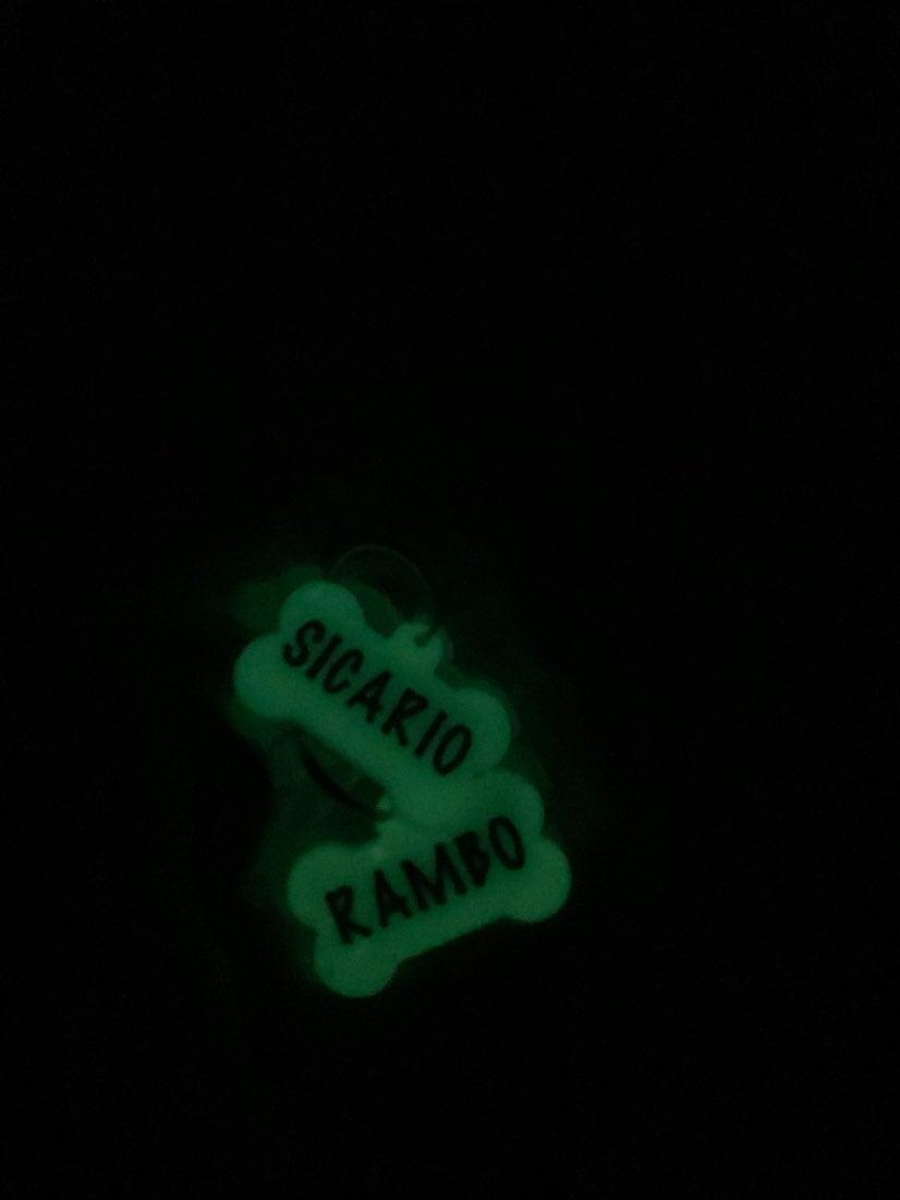 Glow in the dark dog name tags