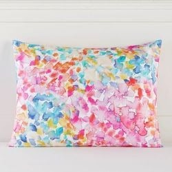Two Pottery Barn Teen Floral Splash Sham
