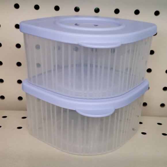 2 new Tupperware fresh cool containers