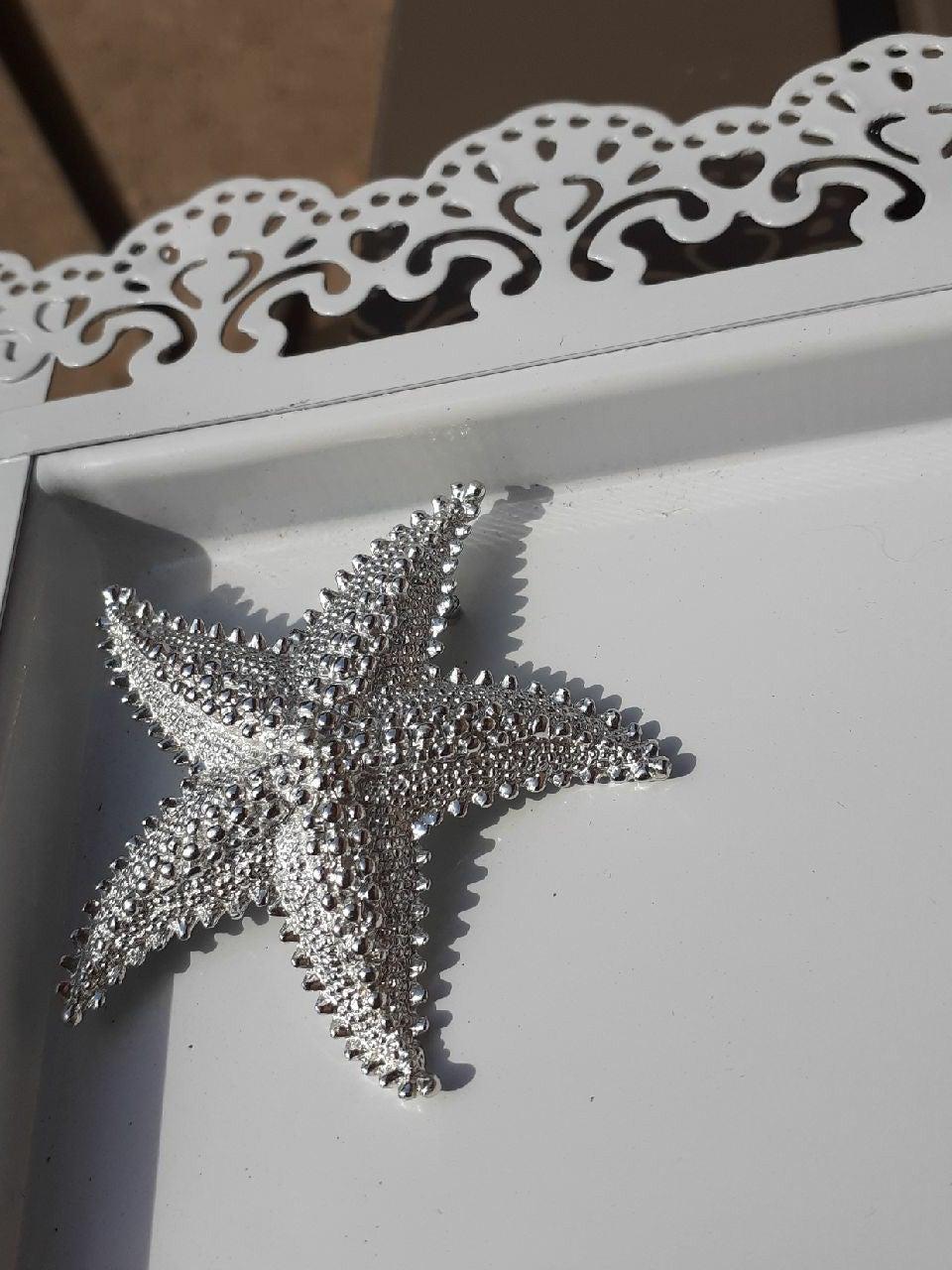 Silver star fish broach