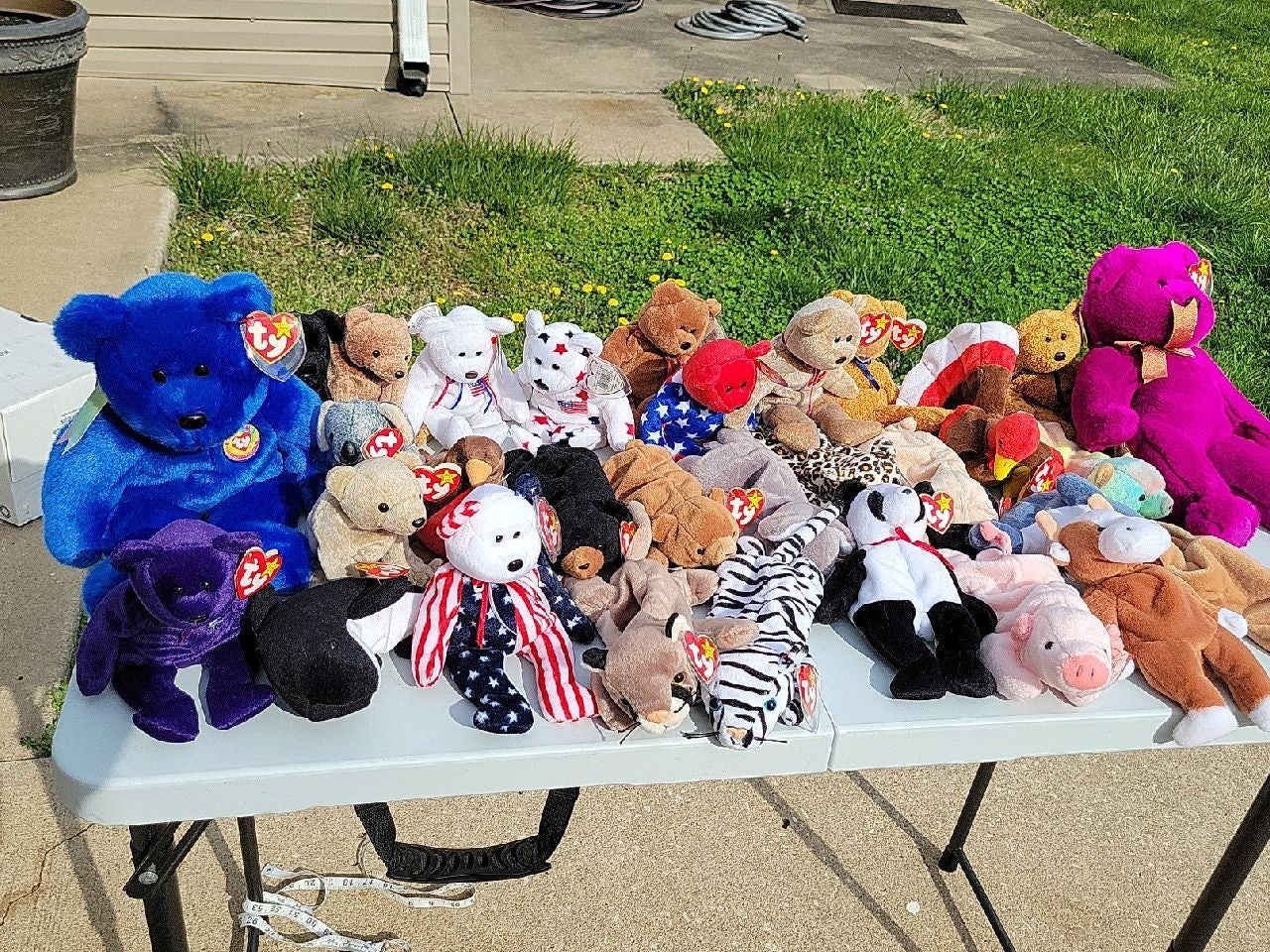 Lot of 31 beanie babies