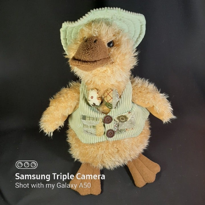 Country Spring Plush Goose in Vest & Hat