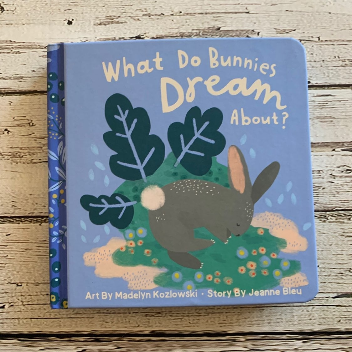 What Do Bunnies Dream About board book