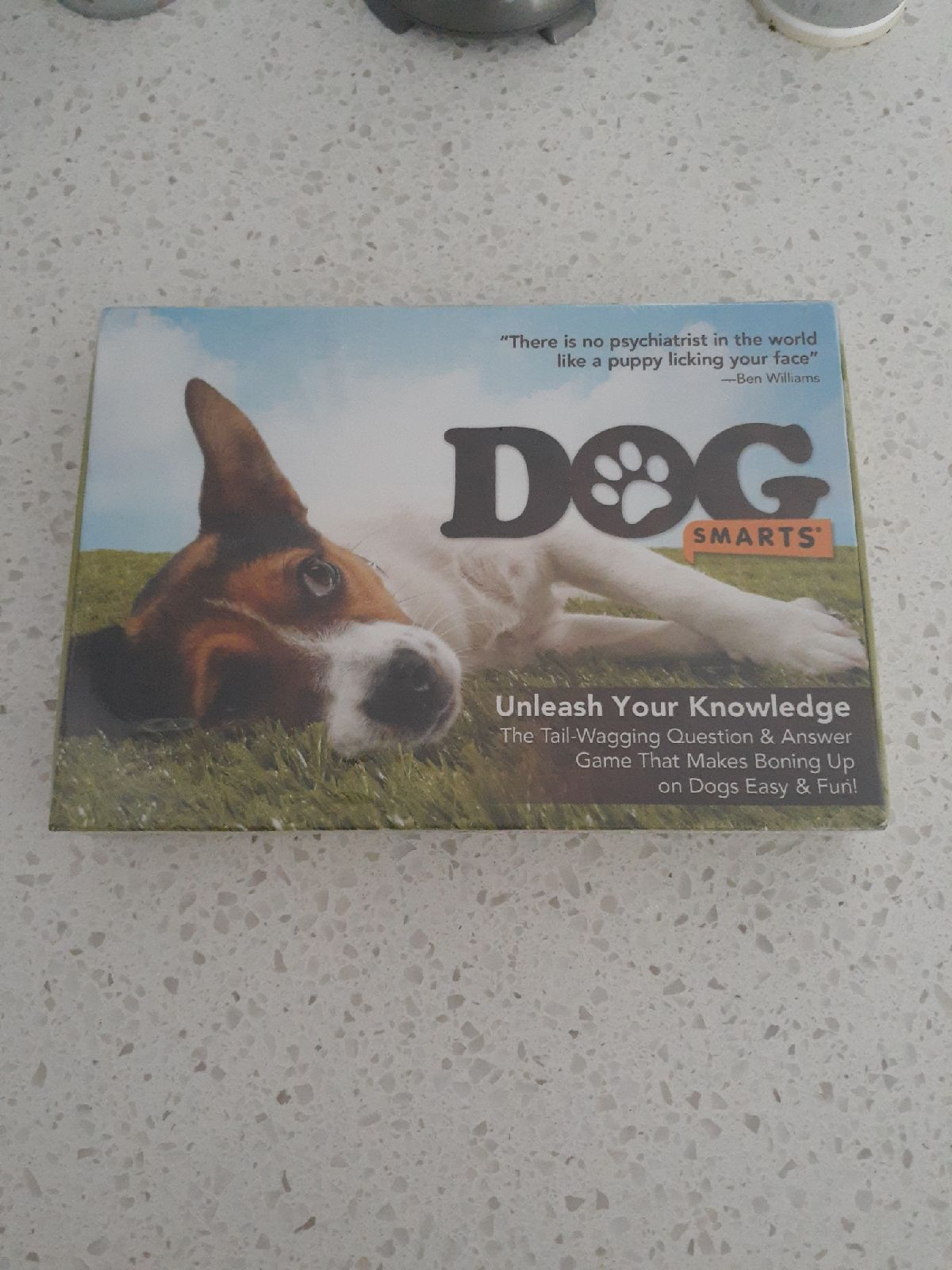 Dog smarts game