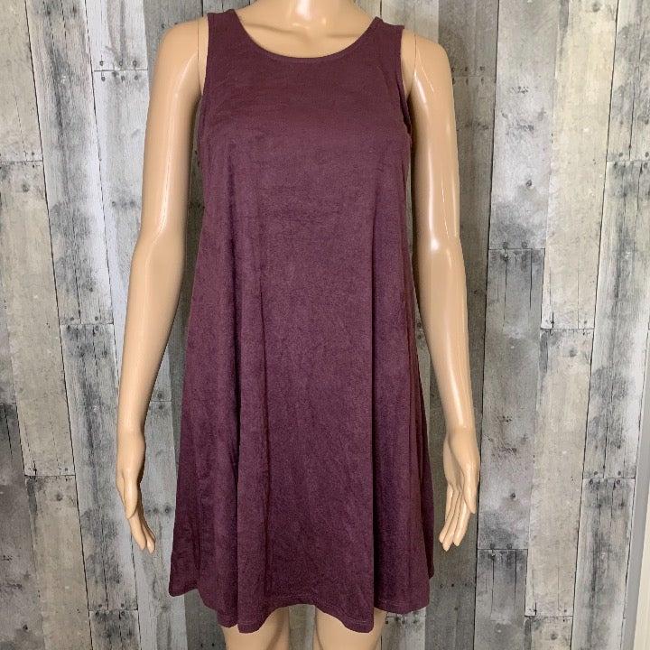 Pink Republic Purple Velvet Tunic Dress