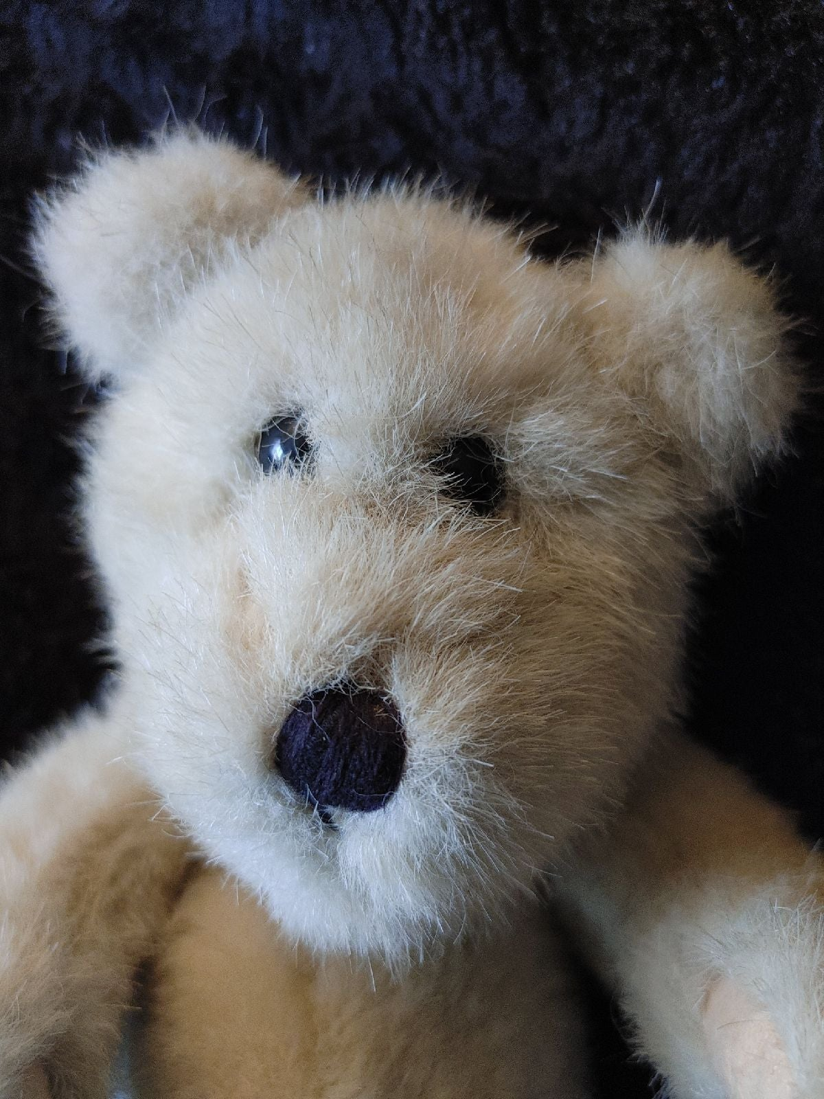Boyds Bear/The Boyds Collection bear