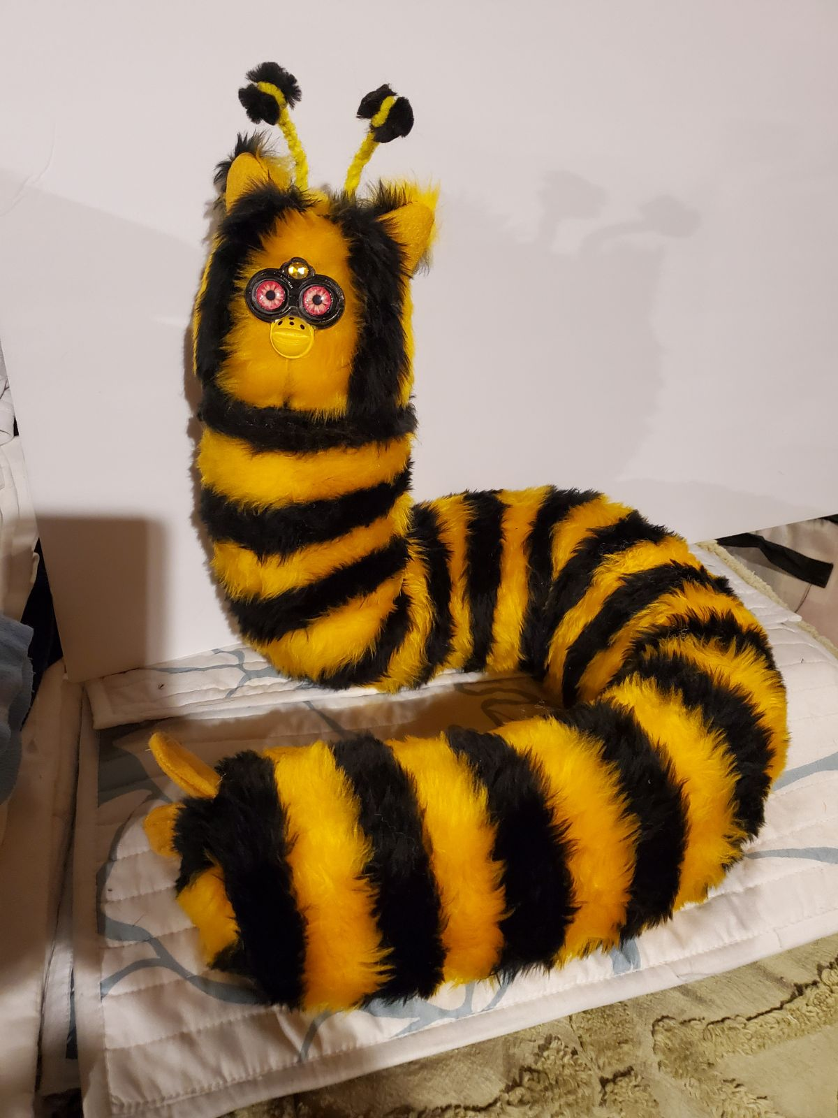Long Fur Bee
