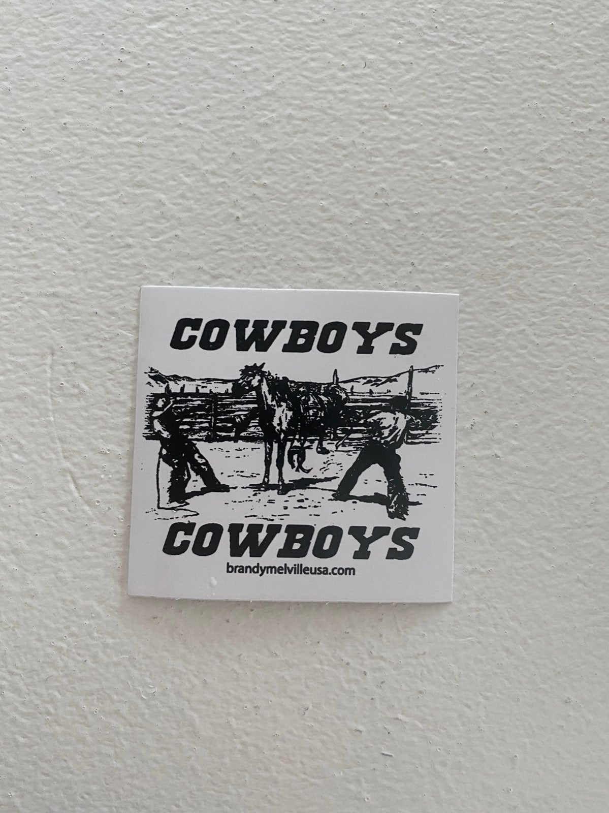 COWBOY BRANDY MELVILLE STICKERS