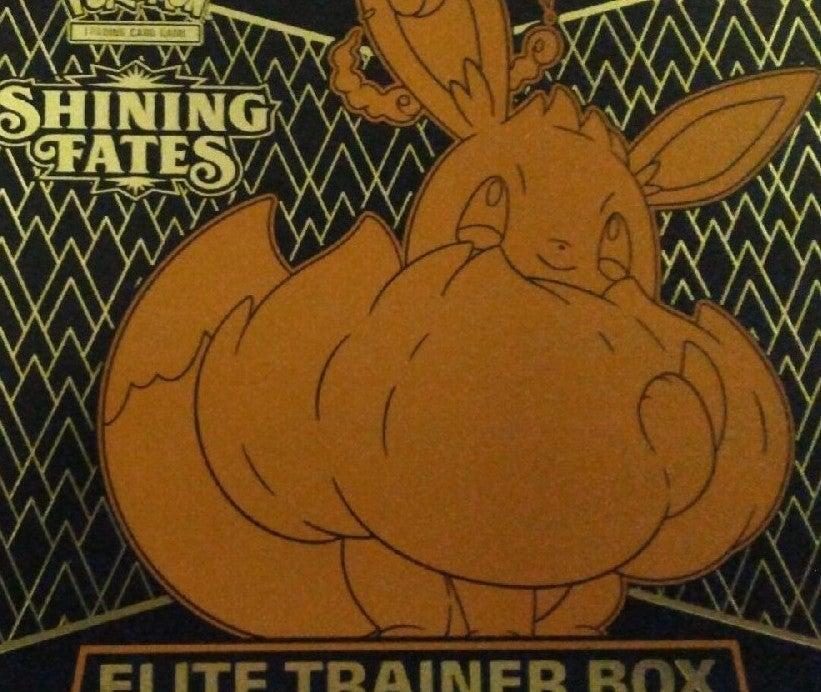 Pokemon Shining Fates ETB --Everything i